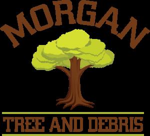 tree care in live oak