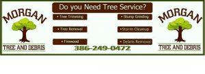 tree service in live oak florida