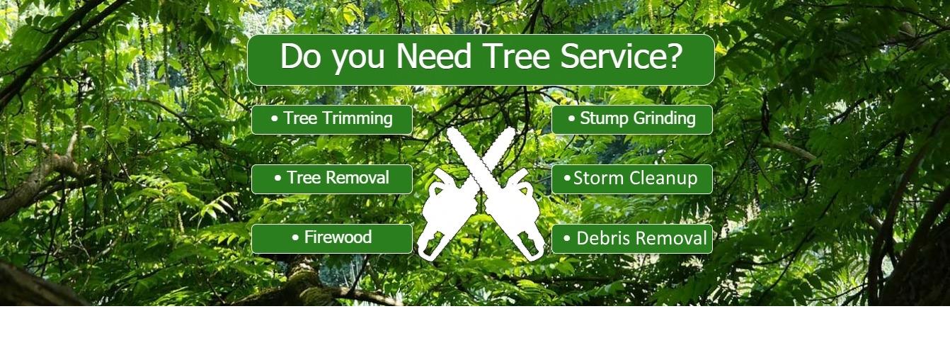 live oak tree service company