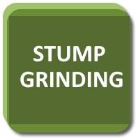 stump grinding live oak