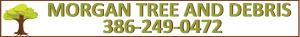 tree removal live oak