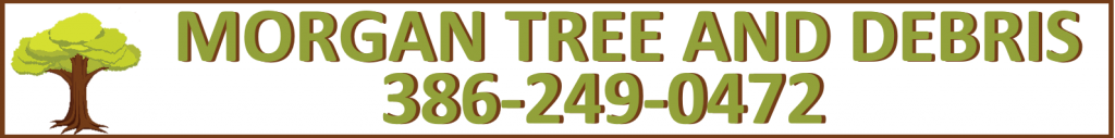 tree service insurance policy