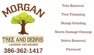 tree service lee fl