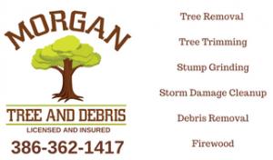 tree service mcalpin fl