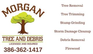 tree service obrien fl